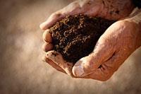 ph_compost_terre