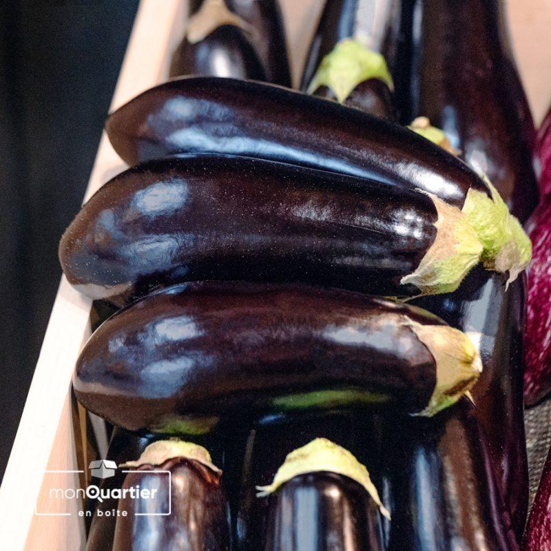 Aubergine italienne