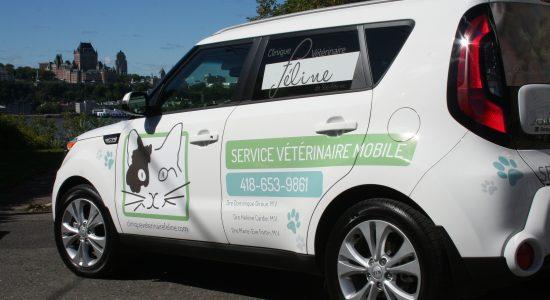 Livraison gratuite avec achat minimum de 20 $   Clinique Vétérinaire Féline de Ste-Foy   Service mobile