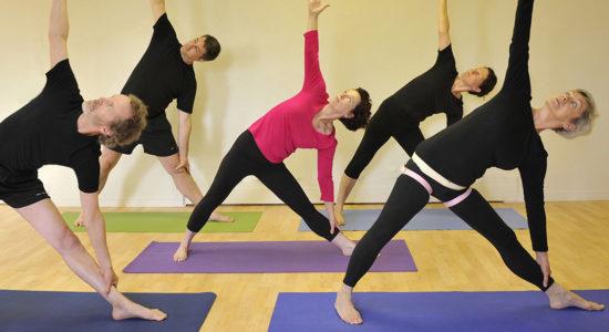 Yoga Iyengar – Niveau 1