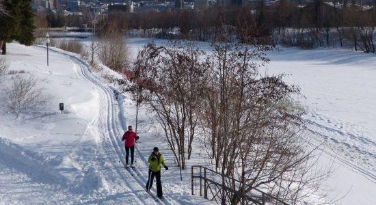 Tricoter l'hiver, repriser l'automne: mise à jour sur les activités municipales et communautaires - Suzie Genest