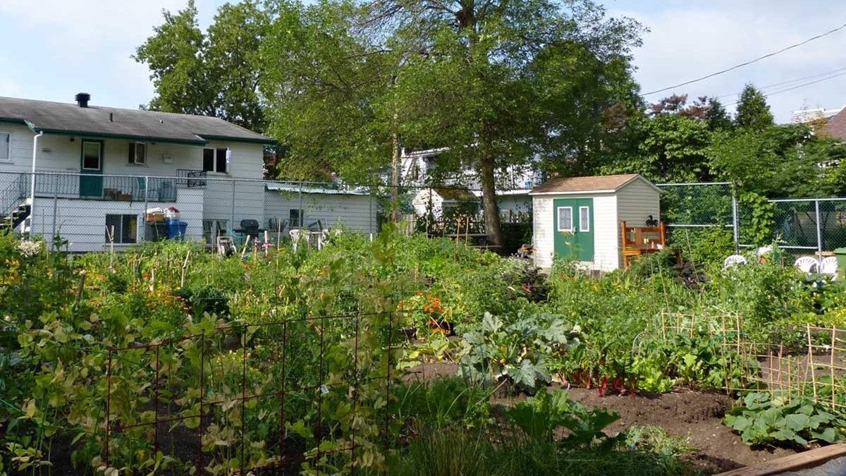 Quel nom pour le futur jardin communautaire ? | 22 février 2018 | Article par Céline Fabriès