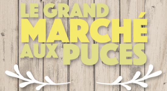 Le grand marché aux puces de Montcalm | Ouverture des inscriptions | SDC Montcalm – Quartier des arts de Québec