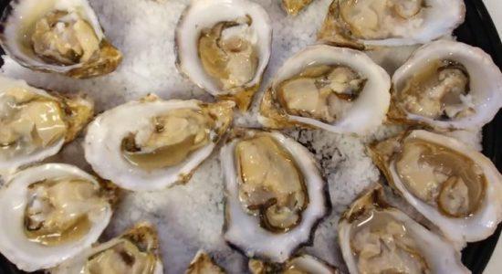 Huîtres Kusshi | Poissonnerie Poisson d'Or