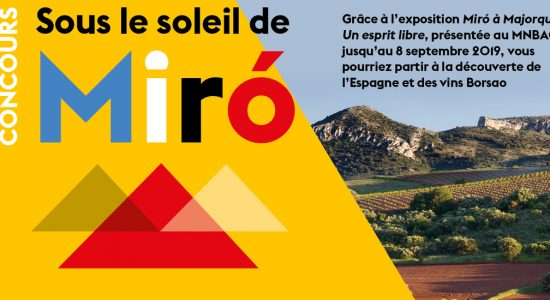 Concours   Sous le soleil de Miró   Musée national des beaux-arts du Québec