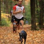 Accessoires canins «Winterson Sports» en boutique - Coureur Nordique (Le)