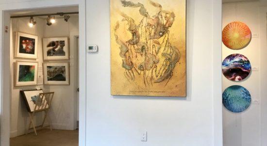 Les œuvres de nos artistes | Galerie d'art Uno