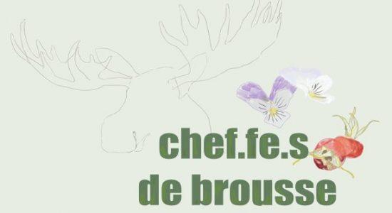 Chef.fe.s de brousse | En présence de Nicolas Paquet
