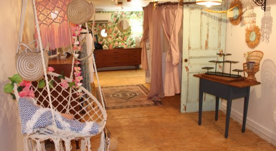 Petite Provence Canada : petit train va loin - Véronique Demers