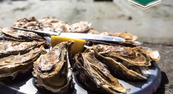 Saison des huîtres | Métro Ferland