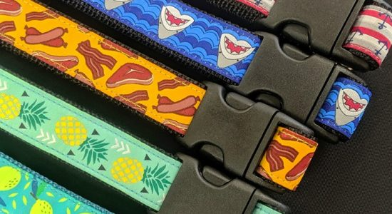 Nouveaux colliers estivaux | Animalerie Boutique Tropicale