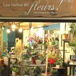 Les Clématites »Pirouettes' - Halles en fleurs (Les)