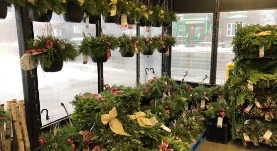 Vente de sapins de Noël et autres décorations naturelles   Provigo