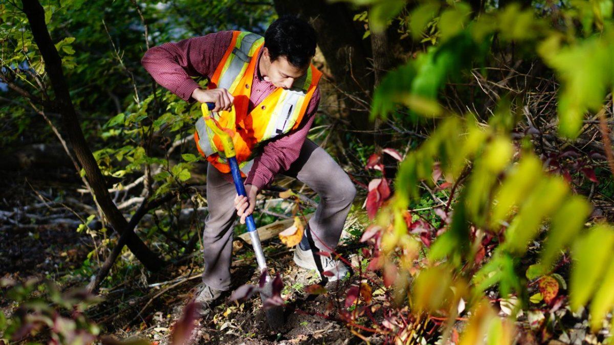 Trente ans d'actions pour l'environnement | 2 avril 2020 | Article par Ève Cayer