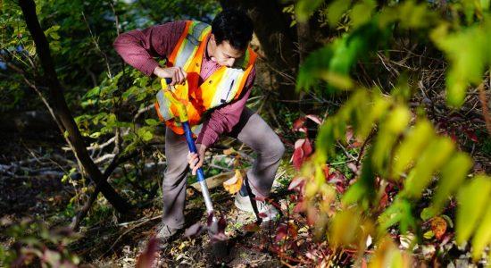 Trente ans d'actions pour l'environnement - Ève Cayer