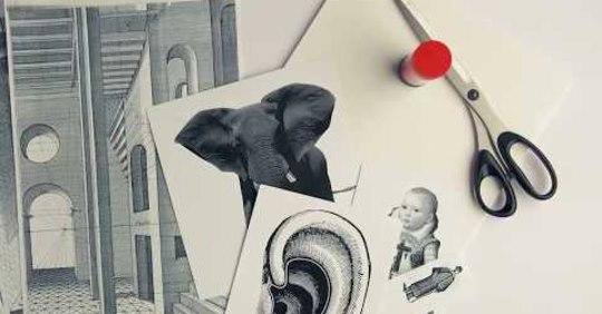 Créez avec le MNBAQ | Nos ateliers illustrés