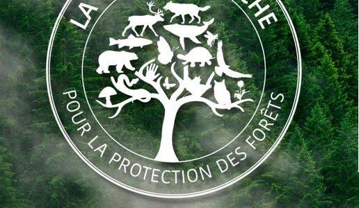 La Grande marche pour la protection des forêts